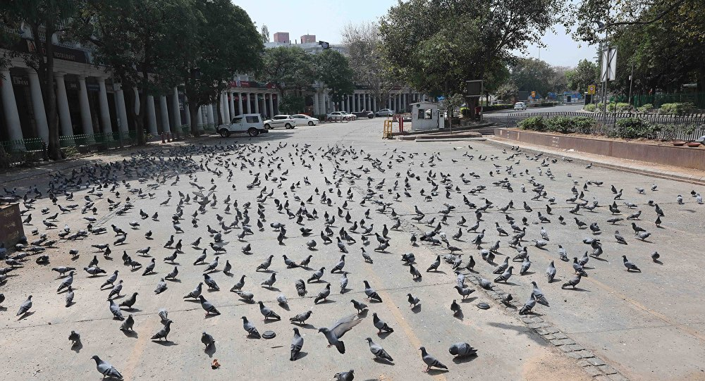 Pigeons walk in an empty parking space in Connaught Place, one of the business and financial hubs in New Delhi, India, 24 March 2020.